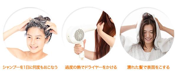正しい髪の毛の手入れ(ヘアケア)法 | 進化する育毛技術~